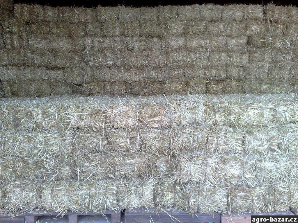 Špičkové kvalitní seno, malé hranaté balíky sena a slámy za cenu velkých kulatých